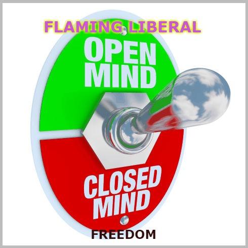 Flaming Liberal